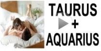 Taurus + Aquarius