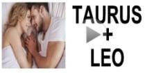 Taurus + Leo